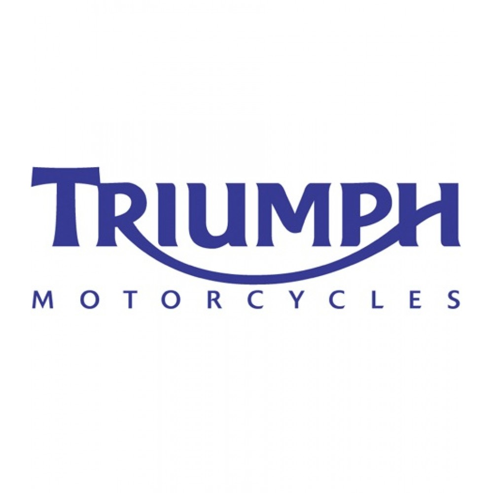 TRIUMPH VAN STICKER